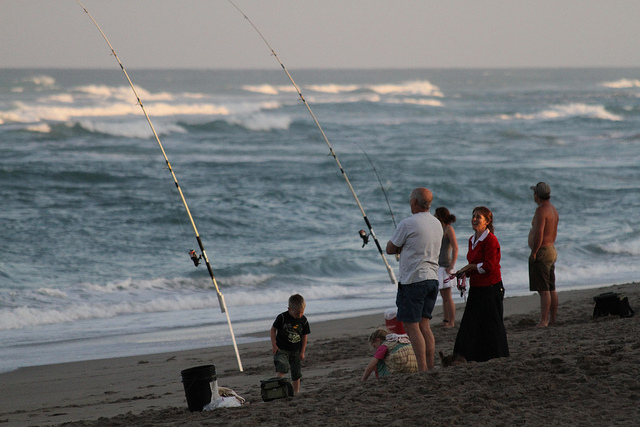 Destin attractions sea oats surf fishing in destin for Surf fishing destin fl