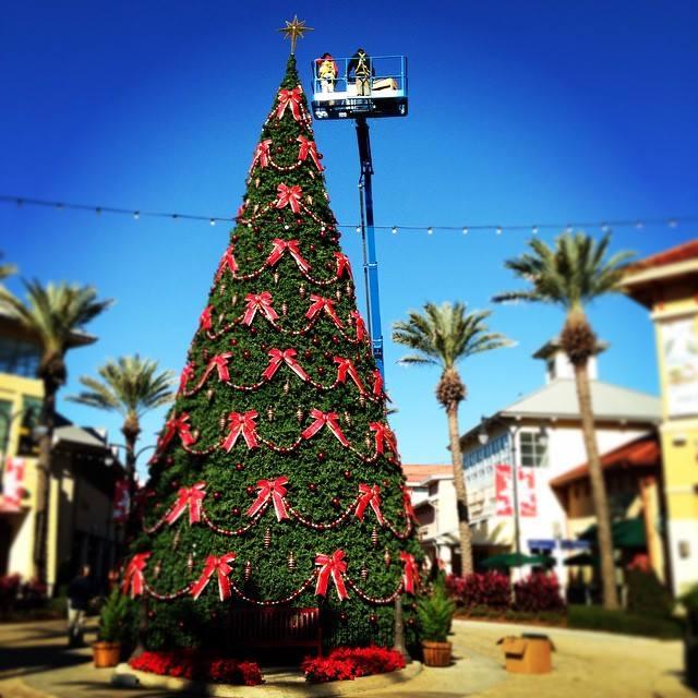 destin, christmas tree lighting