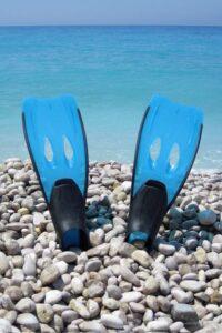 SnorkelFins